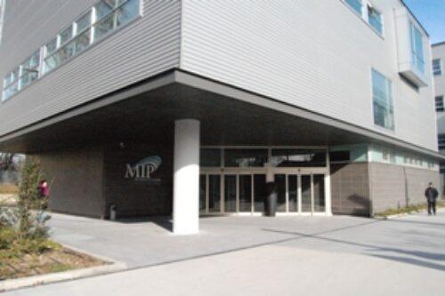 MIP Business School
